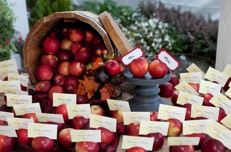 manzanas-sitting