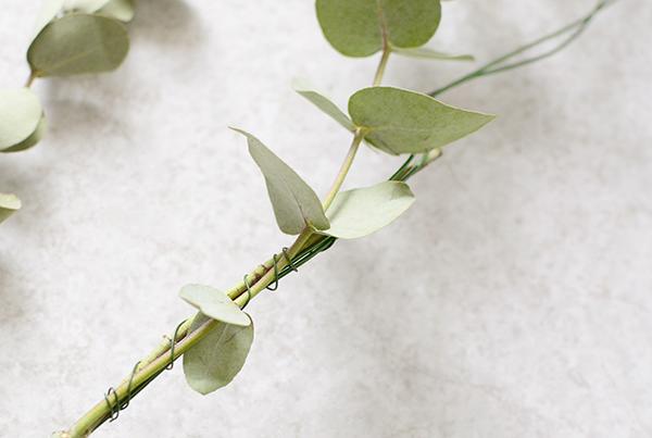 guirnalda-de-ramas-eucalipto-4